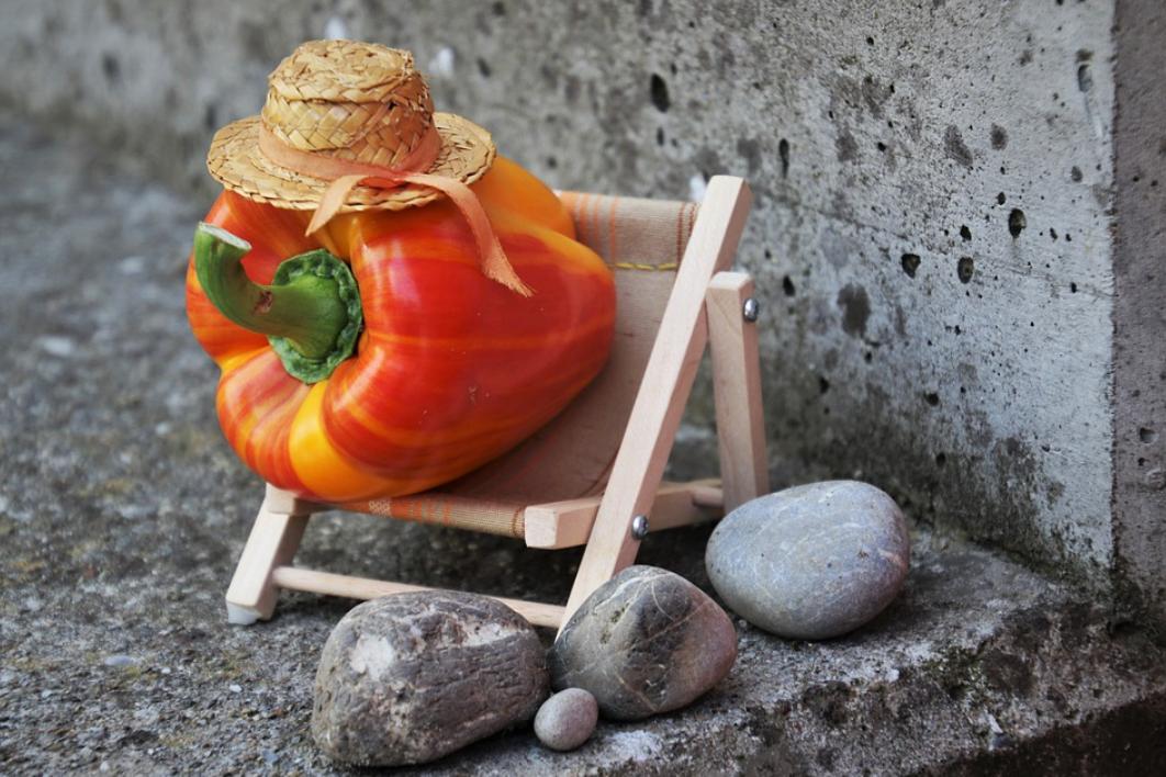paprika na stoličce